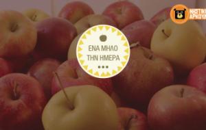 apple-01-340x215
