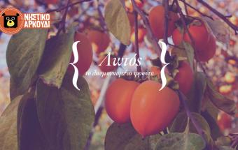 λωτός-το-λησμονημένο-φρούτο_Νηστικό-Αρκούδι-340x215